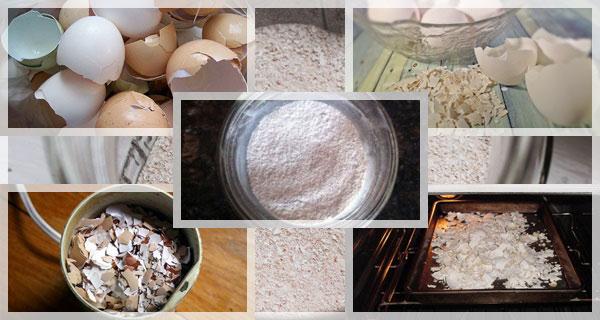 яйца от черупки